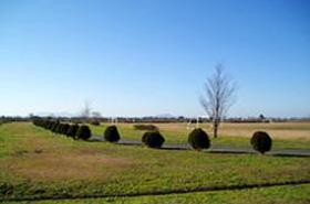 信濃川親水緑地公園